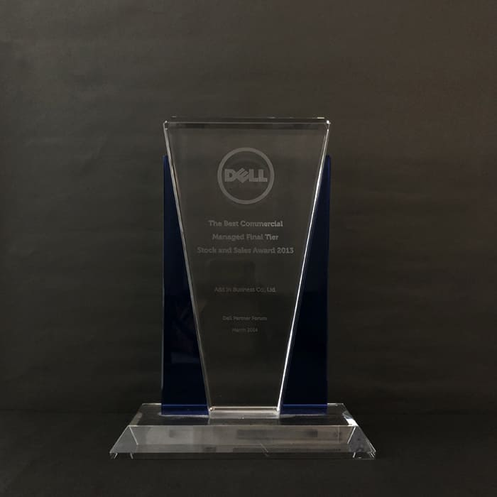 Dell the Best Commercial Managed Final Tier Stock and Sales Award 2013